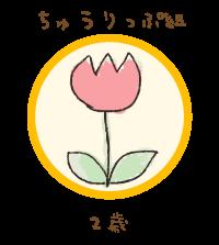 ちゅうりっぷ組